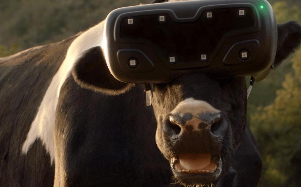 Werbung in 360 Grad Videos
