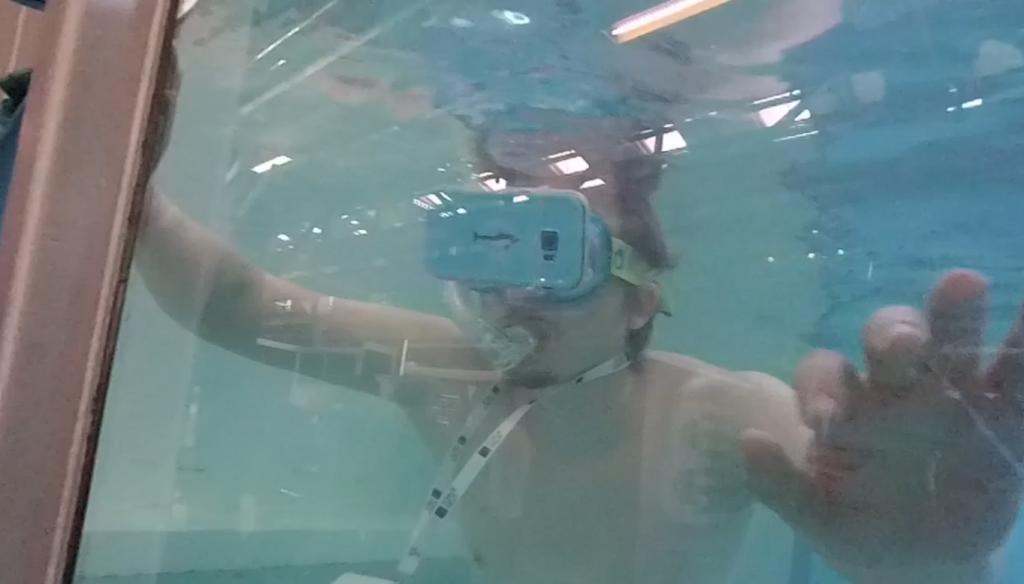 The Dolphin SwimClub