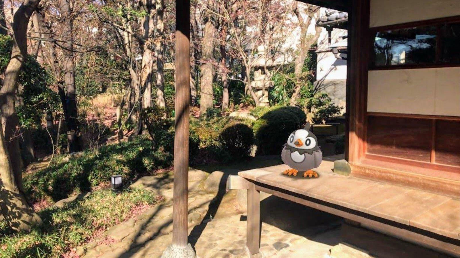 Pokemon-Go-Snapshot-AR-Foto