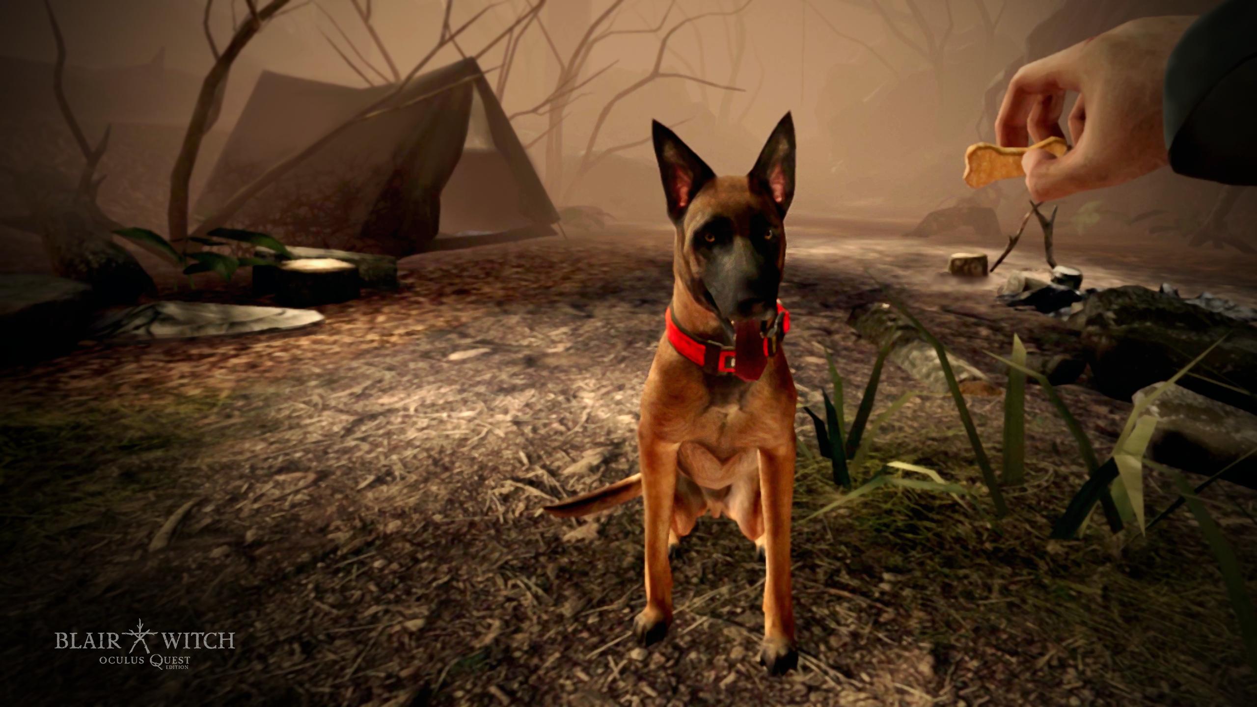 Blair Witch für Oculus Quest